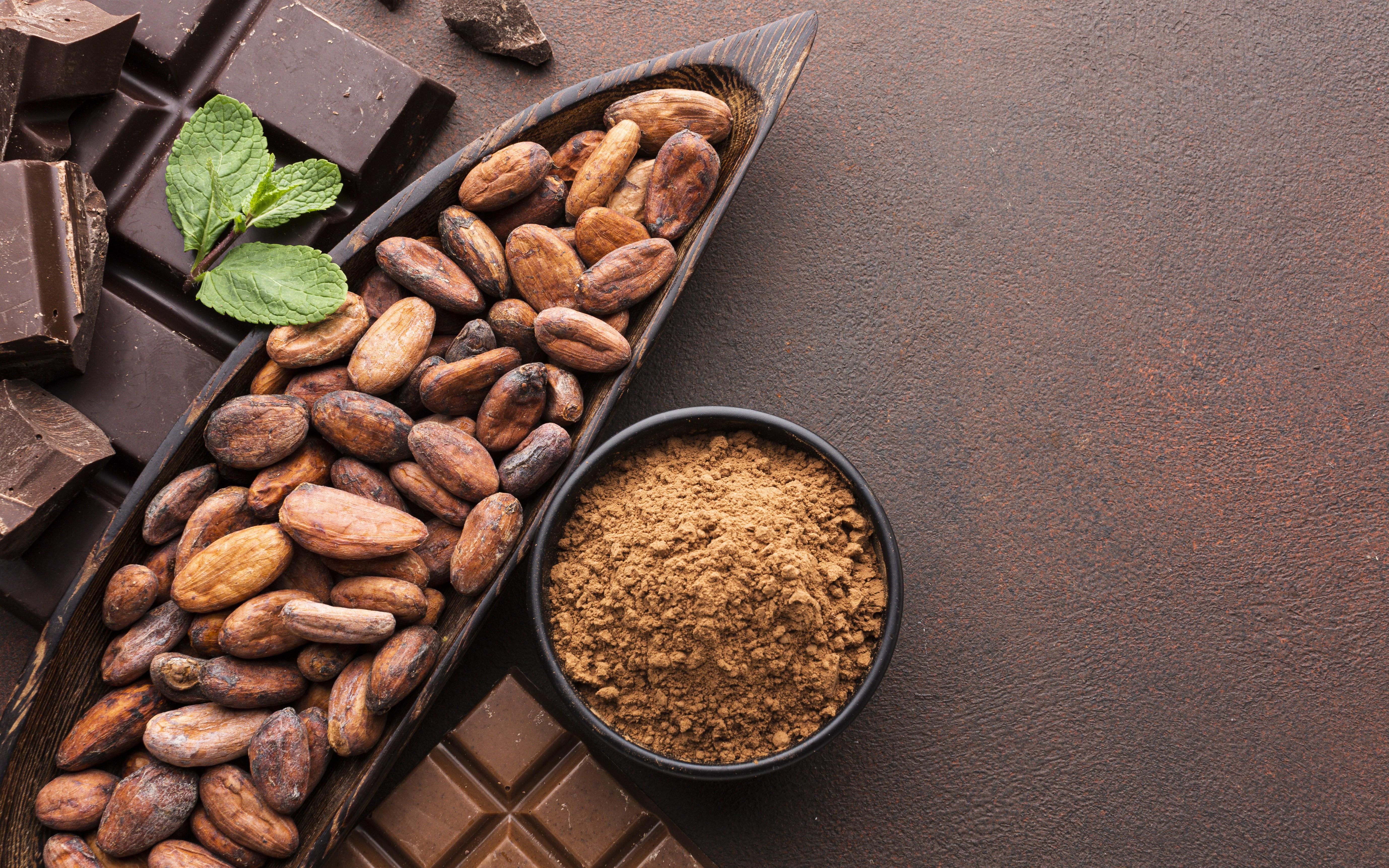 Obtención  de productos nutraceúticos a través de la fermentación del cacao