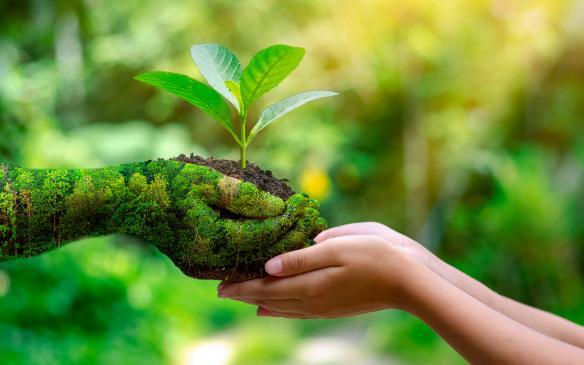 CADi ODS: Educación para el Desarrollo Sostenible